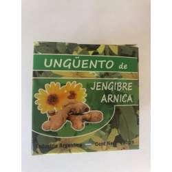 UNGUENTO DE JENGIBRE + ARNICA X 190 GRS. PRODUCTOS IMPORTADOS